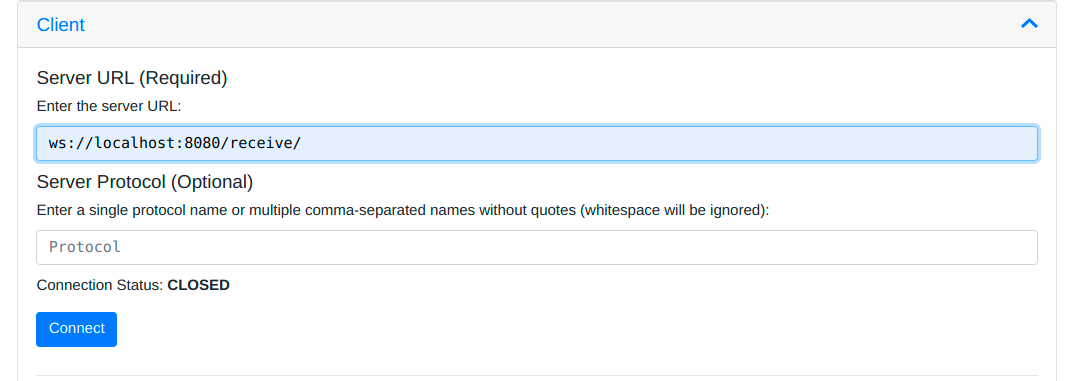 Add the ws://localhost:8080/receive/ to the Server URL input